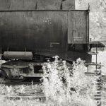 Technik und Natur, Infrarot-Foto