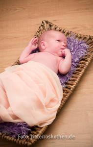 Babyfotos Fotograf Korb Fotostudio Roskothen