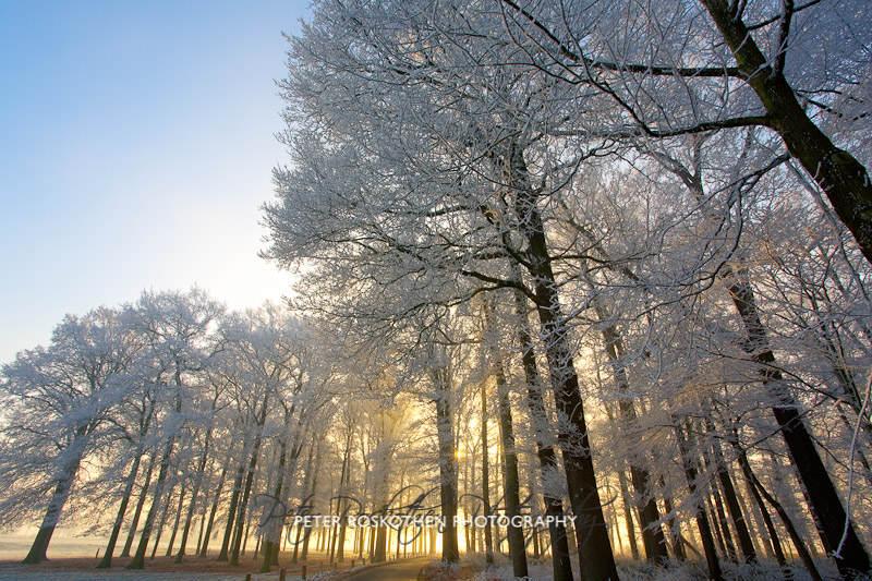 Fotokurs Naturfotografie Niederrhein Landschaftsfotografie Fotoschule Fotografieren lernen Gutschein Geschenk