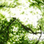 IMG 8755 - Fotoworkshop Naturfotografie Makrofotografie