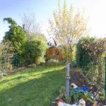 Foto Blick in den Garten