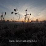 HDR Fotografie: Unterbelichtetes Foto (-2)