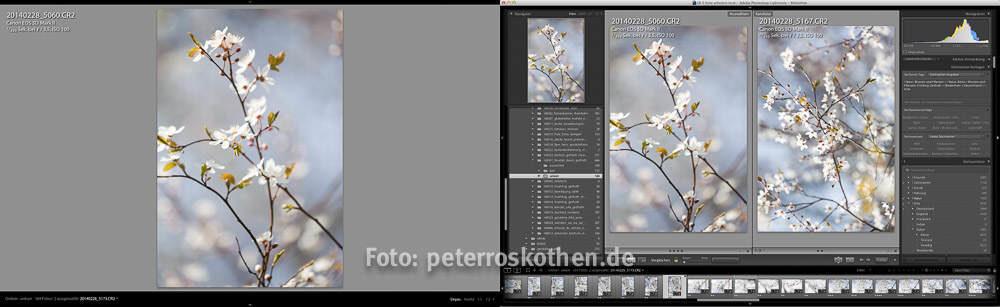 Lightroom Schulung LR lernen Fotokurs Fotoschule