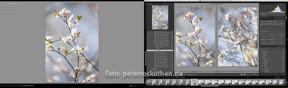 Lightroom Schulung Bildbearbeitung LR lernen Fotokurs Fotoschule