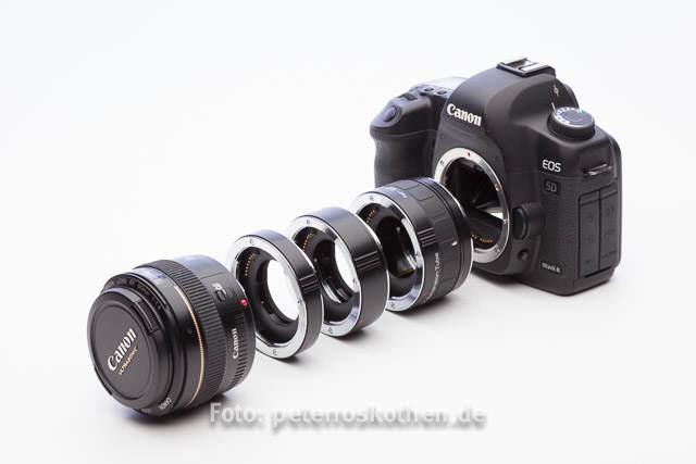 Wie fotografiere ich Makro? Tipps und Tricks zur Makrofotografie
