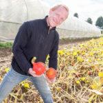 20130909 5144 - Die leckersten Tomaten - Fotoreportage