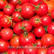 Die leckersten Tomaten – Fotoreportage