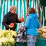 20131031 0079 - Die leckersten Tomaten - Fotoreportage