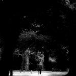 20140623 20140621 IMG 5874sw - Fotoworkshop Makrofotografie im Botanischen Garten Krefeld