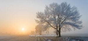 Fotokurs Naturfotografie Fotoschule Niederrhein Fotografieren lernen Gutschein Geschenk