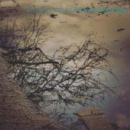 Fotografieren bei Regen – Fotomotivsuche
