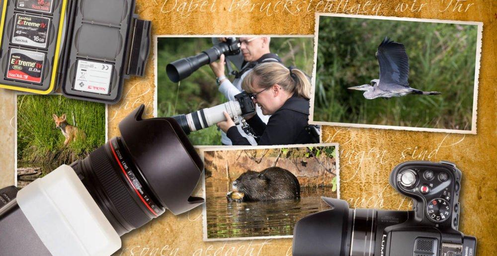 Wildlife Fotokurs - Fotoschule Roskothen