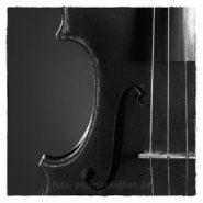 Die Geige – Foto des Tages – Peter Roskothen