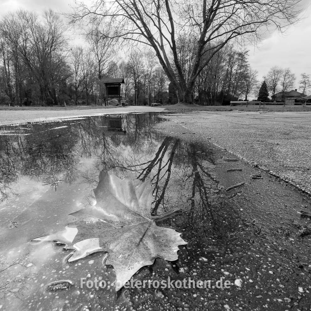 Fotografieren bei Regen in den Ferien - Aufgabe Spiegelungen