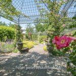 Fotokurs Kasteeltuinen - Gartenfotografie lernen
