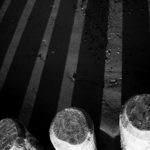 schwarzweiss fotokurs 20100418 0064 - Schwarzweiss Fotokurs