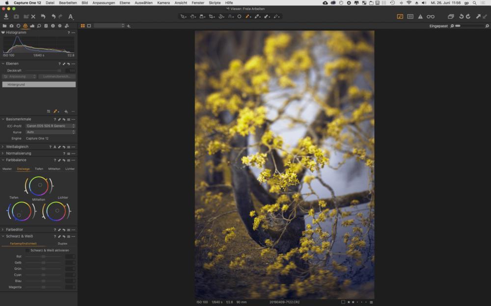 Farben kann man in Capture One Pro besonders gut bearbeiten